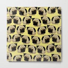 Pug Dogs Metal Print