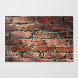 Brick v2 Canvas Print