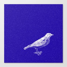 Blue Bird in the Snow Canvas Print