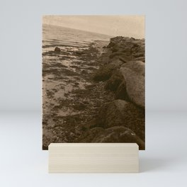 Salted Rocks Mini Art Print