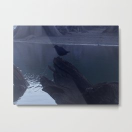 """""""Mysterious voyeur bird watches me photograph from my kayak in a dark setting.""""  Nature Series #1. Metal Print"""
