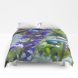 Salvia Comforters
