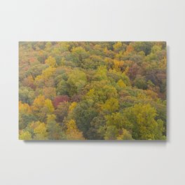 Above The Trees Metal Print