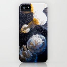MEDUSAS iPhone Case