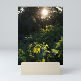 Savior II Mini Art Print