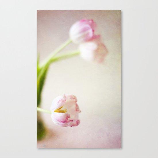 Lone Tulip Canvas Print