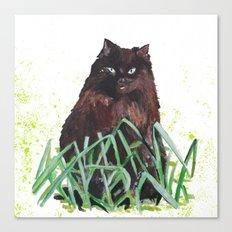 grass cat Canvas Print