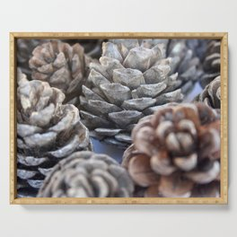Autumn Pinecones In Greys and Browns Serving Tray