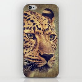 Leopard portrait iPhone Skin