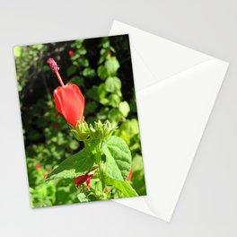 Arboretum Flower- Color Stationery Cards