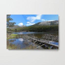 Dreamy Lake Metal Print