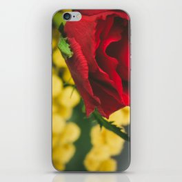 Roses and mimosas iPhone Skin