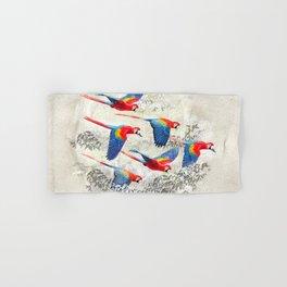 Scarlet macaw flight Hand & Bath Towel
