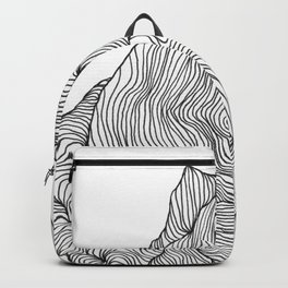 Crevice Backpack