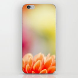 Orange Dahlia iPhone Skin