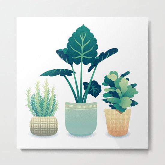 Potted Plants Metal Print