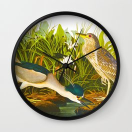 Night Heron, or Qua bird Wall Clock