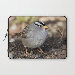 Profile of a White-Crowned Sparrow Laptop Sleeve