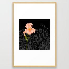 Iris Orange Framed Art Print