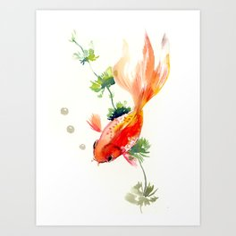 Goldfish, aquarium fish art, design watercolor fish painting Art Print