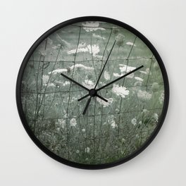 Fenced in Field of Hogweed Wall Clock