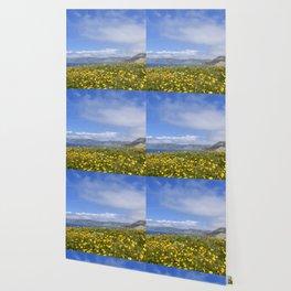 Brittlebush Wallpaper