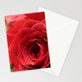 A Rose - The Flower Collection Stationery Cards