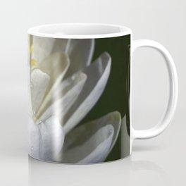 Water Lily Simplicity Coffee Mug