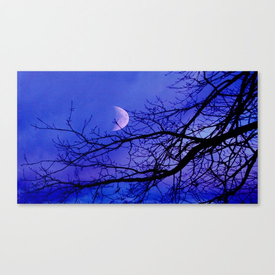 We all shine on. Canvas Print