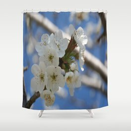 Beautiful Delicate Cherry Blossom Flowers Shower Curtain