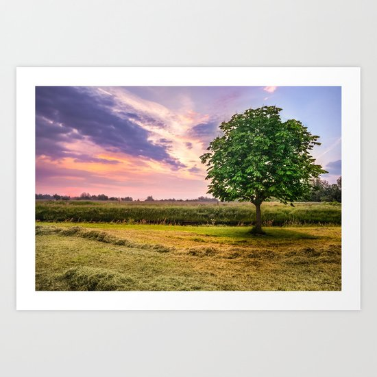 Green Tree and Sunset Sky Art Print