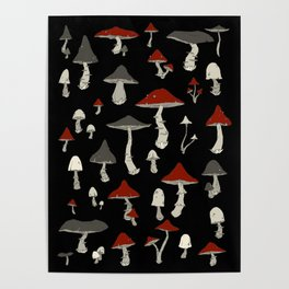 Mushrooms Poster