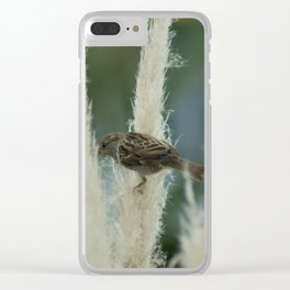Sparrow Among Oats Clear iPhone Case