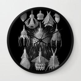 Plankton Shells (Cyrtoidea) by Ernst Haeckel Wall Clock