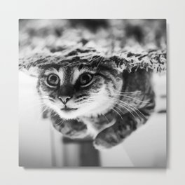 RELAXING CAT Metal Print