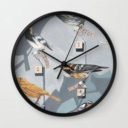 Warbler Exhibit Museum Birds Wall Clock