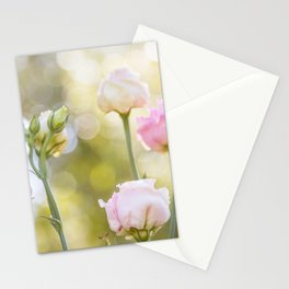 Rose Bokeh Stationery Cards