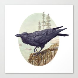 Raven of the North Atlantic Canvas Print