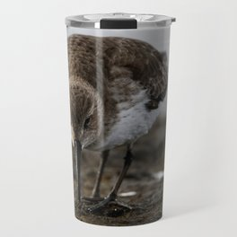 Dunlin Sandpiper | Wildlife Photography | Birds Travel Mug