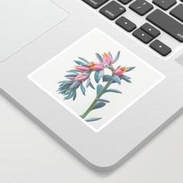 Succulent Cluster Sticker