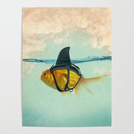Brilliant DISGUISE - Goldfish with a Shark Fin Poster