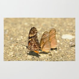 butterfly (Dione juno and Dryas julia) Rug