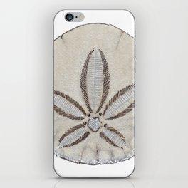 sandollar iPhone Skin