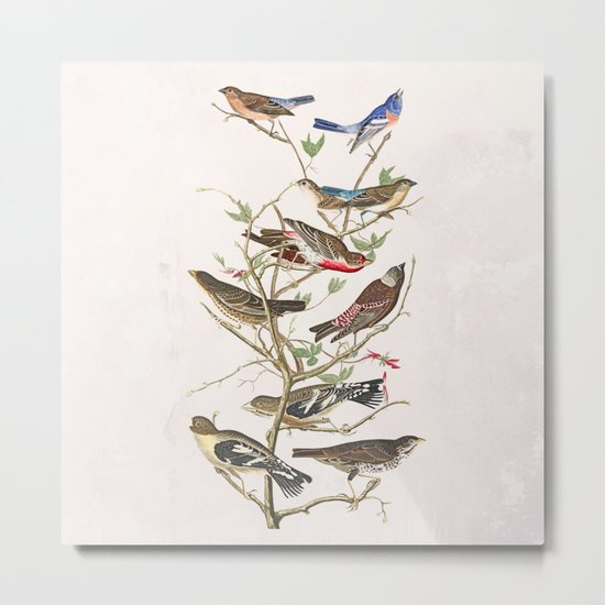 Bird Tree Metal Print