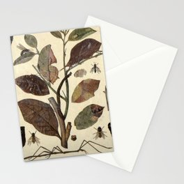 Mimicry In Nature Stationery Cards