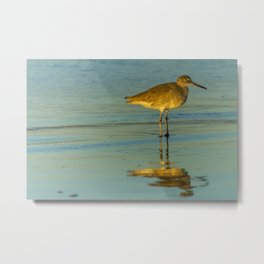 Sandpiper Reflections Metal Print