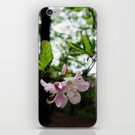 secret garden 19 iPhone Skin