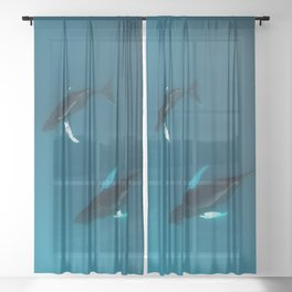 Mother and Child – Humpback Whales in the Ocean – Minimalist Wildlife Photography Sheer Curtain