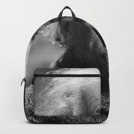 Albert Einstein Backpack