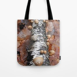 After Autumn Tote Bag